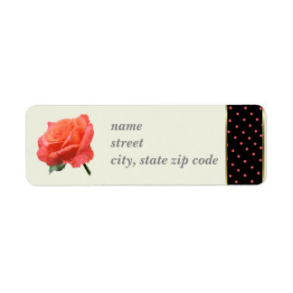 Coral Rose with Coral on Black Dot border