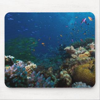 Coral Sea Mousepad