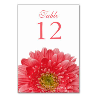 Coral White Gerbera Daisy Wedding Table Cards