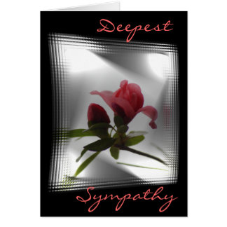 CoralAzalea buds on blk-customize any occasion Card