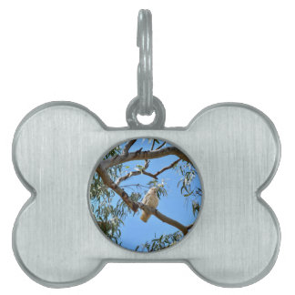 CORELLA BIRD QUEENSLAND AUSTRALIA PET ID TAG