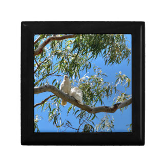 CORELLA BIRDS QUEENSLAND AUSTRALIA KEEPSAKE BOXES