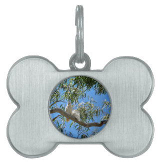 CORELLA BIRDS QUEENSLAND AUSTRALIA PET TAG