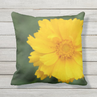 Coreopsis outdoor throw pillow