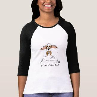 Corgi One of Those Days Women's 3/4 Sleeve Shirt