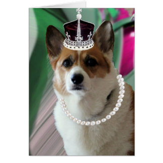 corgi princess card