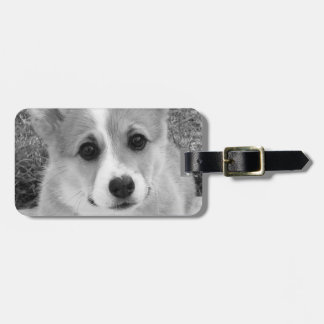 Corgi Puppy Luggage Tag