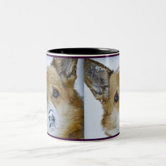 CORGI Snow Nose Two-Tone Coffee Mug