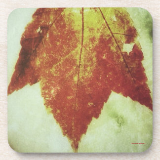Cork Coasters, Set of six ~ Autumn Leaf Coaster
