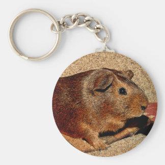 Corkboard Look Guinea Pig Keychain
