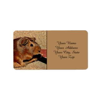 Corkboard Look Guinea Pig Label