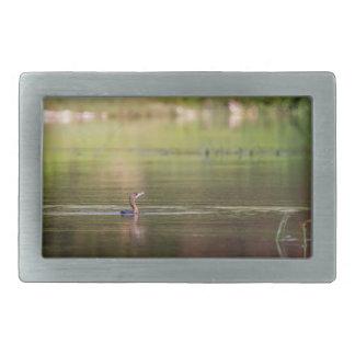 Cormorant bird swimming peacefully belt buckles