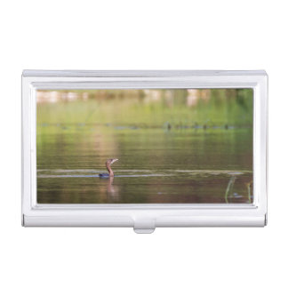 Cormorant bird swimming peacefully case for business cards