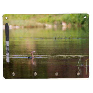 Cormorant bird swimming peacefully dry erase board with keychain holder