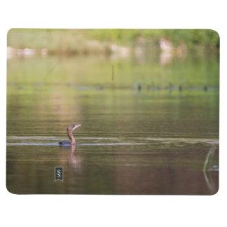 Cormorant bird swimming peacefully journal