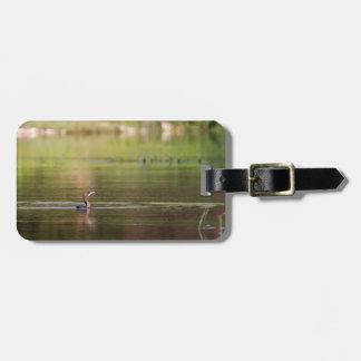Cormorant bird swimming peacefully luggage tag