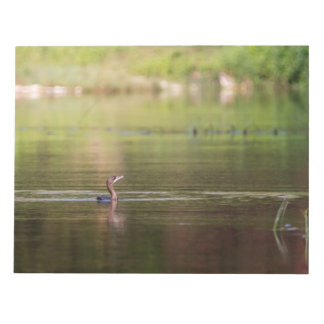 Cormorant bird swimming peacefully notepad