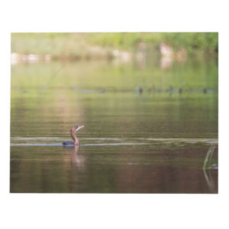 Cormorant bird swimming peacefully notepad