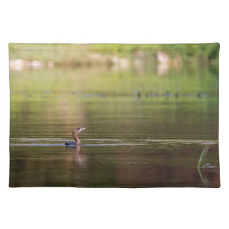 Cormorant bird swimming peacefully placemat