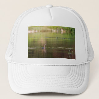 Cormorant bird swimming peacefully trucker hat