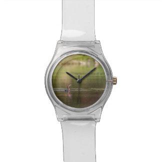 Cormorant bird swimming peacefully wristwatch