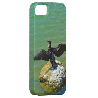 Cormorant iPhone 5 Case