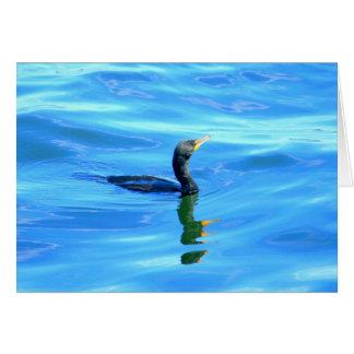Cormorant swimming card