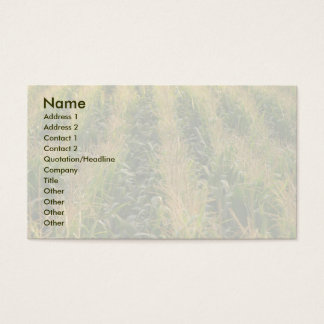 Corn field business card