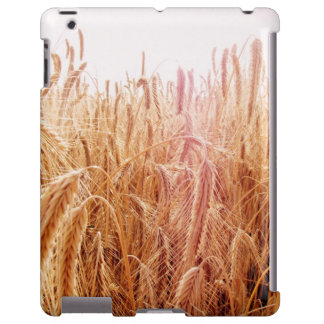 Corn field ears iPad covering Barely There