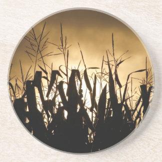 Corn field silhouettes coaster