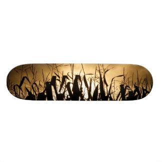Corn field silhouettes skate deck