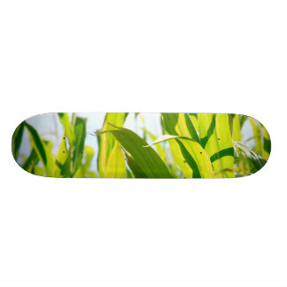 Corn leaves custom skateboard
