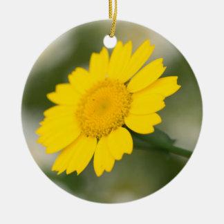 Corn Marigold Ceramic Ornament
