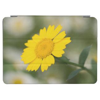 Corn Marigold iPad Air Cover