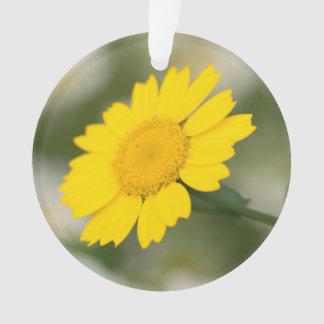 Corn Marigold Ornament