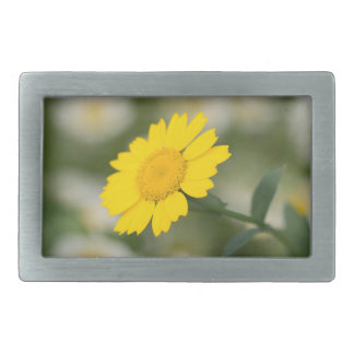 Corn Marigold Rectangular Belt Buckle