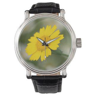 Corn Marigold Wrist Watch