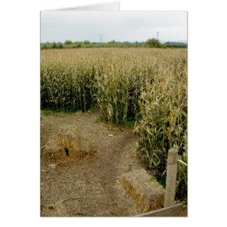 Corn Maze Card