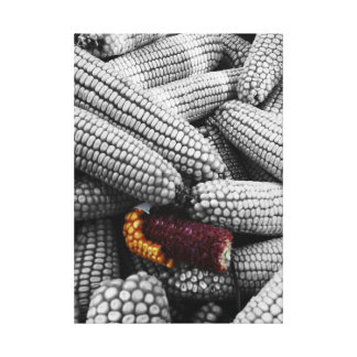 Corn On The Cob Color Splash Canvas Print