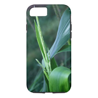 Corn Plant iPhone case