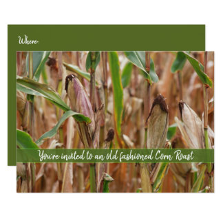 Corn Roast, Field Of Corn Autumn Corncobs Card
