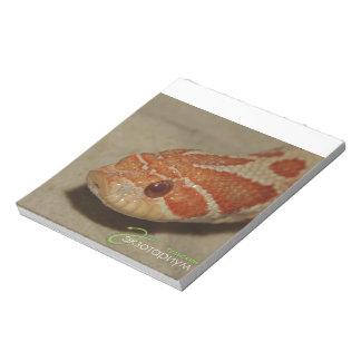 Corn snake notepads