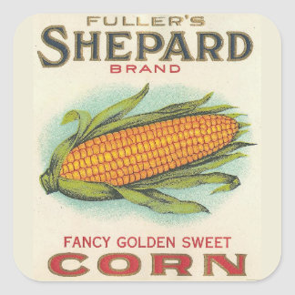 Corn Square Sticker
