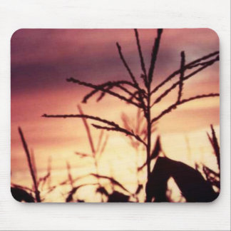 Corn Tassels at Sunset Mouse Pad