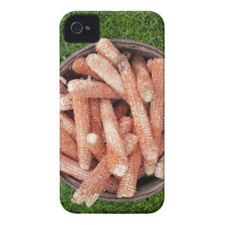 Corn waste iPhone 4 covers