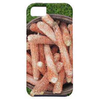 Corn waste iPhone 5 cover