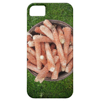 Corn waste iPhone 5 covers