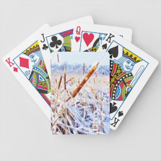 Corndog in the snow bicycle playing cards