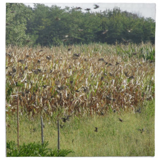 Cornfield and common starlings printed napkin