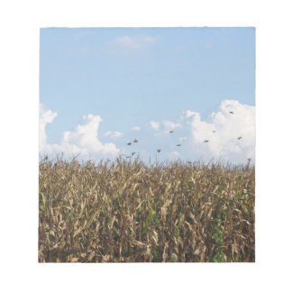 Cornfield and swallows notepad